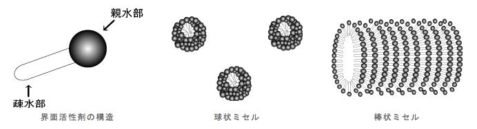 界面活性剤の構造・球状ミセル・棒状ミセル
